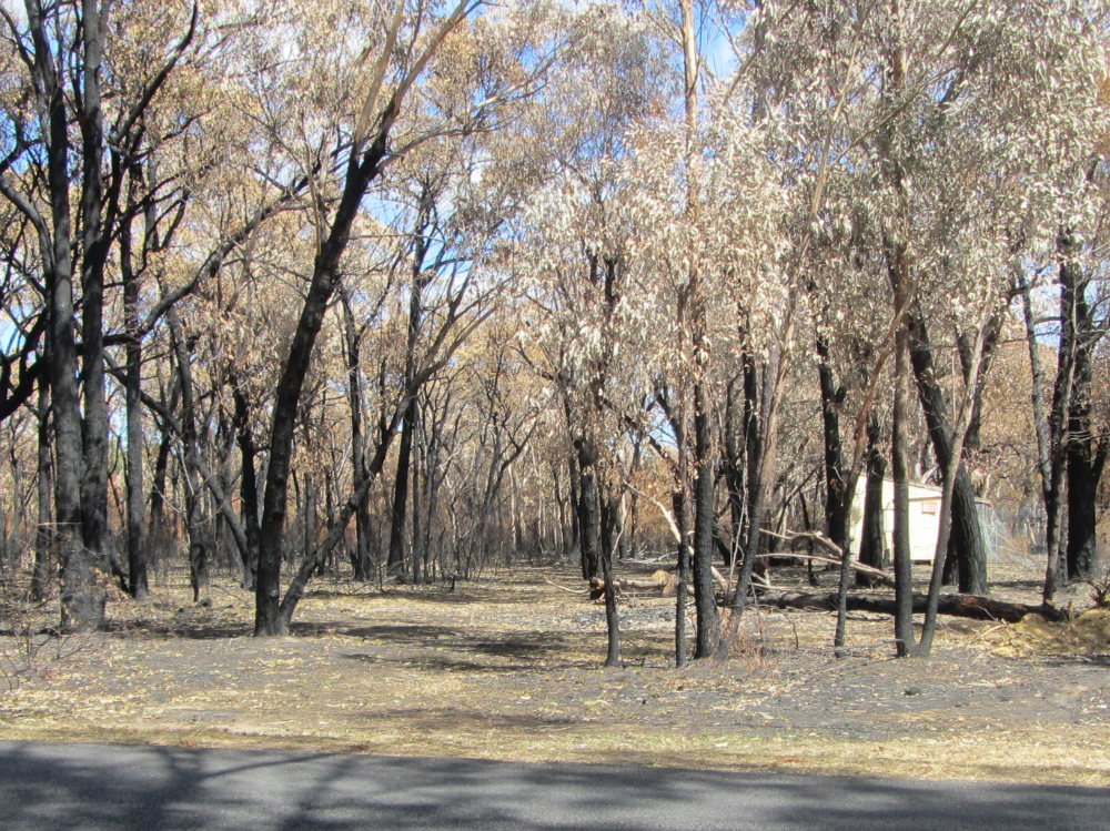 Balmoral fire damage