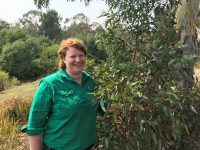 Lady standing next to eucalyptus tree, touching leaves