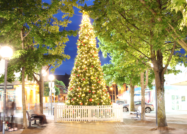Community Christmas Tree in Bowral's Corbett Plaza
