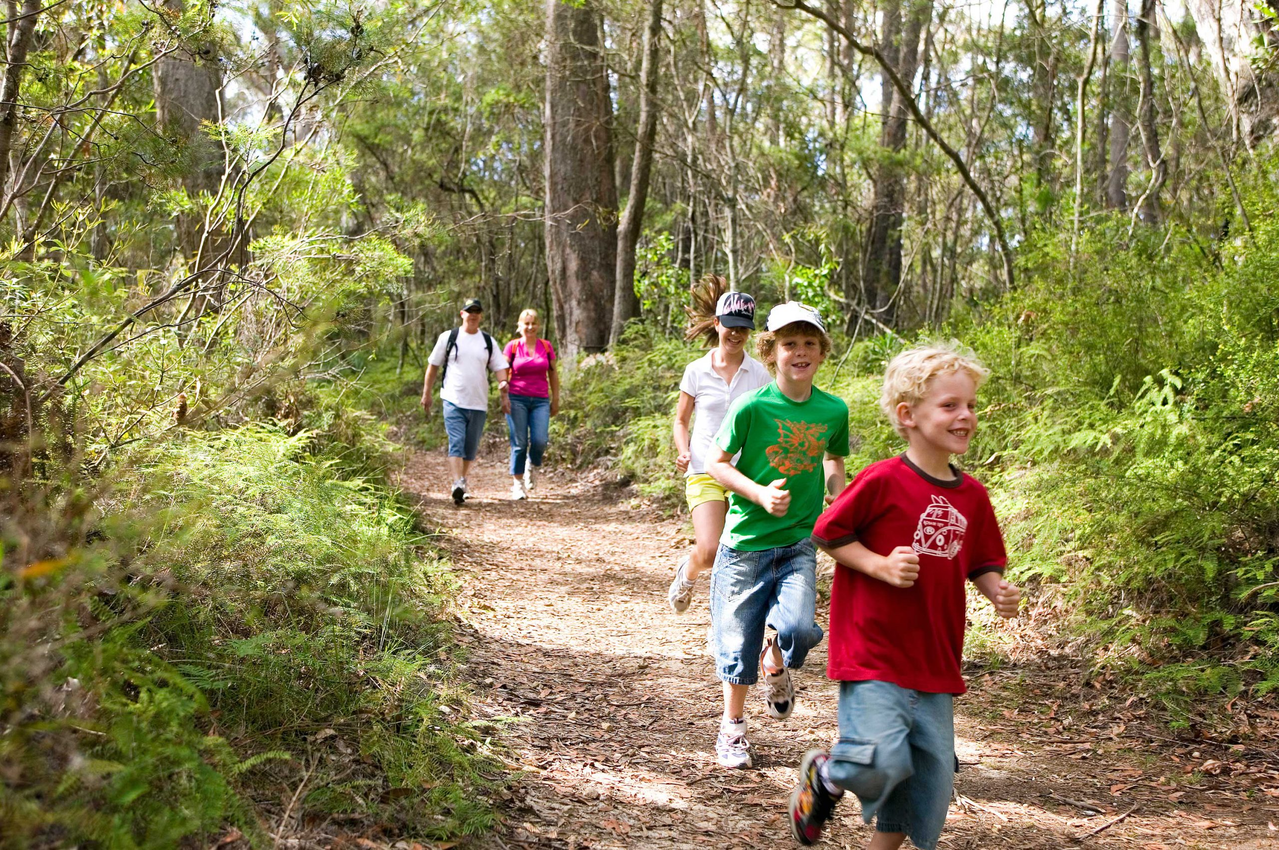 Bush walking in the Southern Highlands